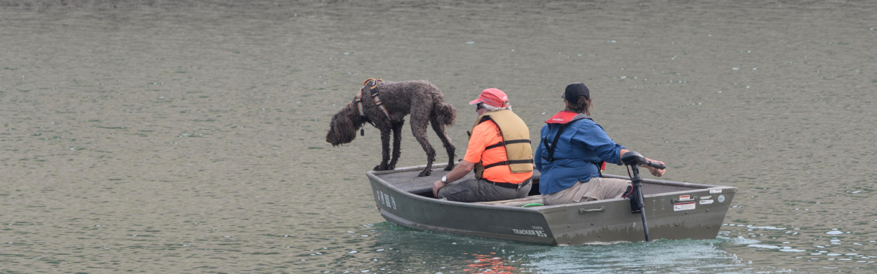 Search and Rescue Dogs of Colorado Rotating Header Image